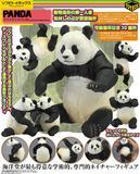 【A】再版 可动生物模型 大熊猫 003027SC