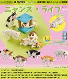 【B】400日元扭蛋 可动小手办 猫咪的生活 全5种 (1袋30个) 083203