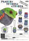 300日元扭蛋 小手办挂件 蛙类图鉴 全6种 (1袋40个) 3711145