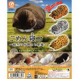 【A】200日元扭蛋 小摆件 匍匐睡觉喵喵~野生动物们登场啦~ 全7种(1袋50个)266347