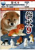 200日元扭蛋 小手办 柴犬 第9弹 全6种 (1袋50个)  620996