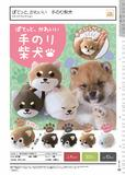 300日元扭蛋 掌心玩偶 柴犬 全5种 (1袋40个) 206435