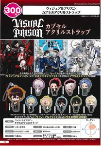【B】300日元扭蛋 Visual Prison 亚克力挂件 全10种 (1袋40个) 219453