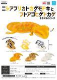 【B】300日元扭蛋 小手办 睡觉的蜥蜴 全6种 (1袋40个) 373965