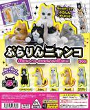 【A】200日元扭蛋 小手办 杯边的喵喵 全5种(1袋50个)105561