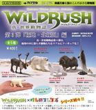 400日元扭蛋 手办 WILD RUSH 真·世界动物志 第3弹 极地·北极篇 全5种 (1袋30个) 082565