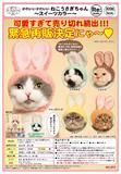 再版 300日元扭蛋 可爱猫猫头巾 兔耳Ver. 甜美色 全5种 178469ZB